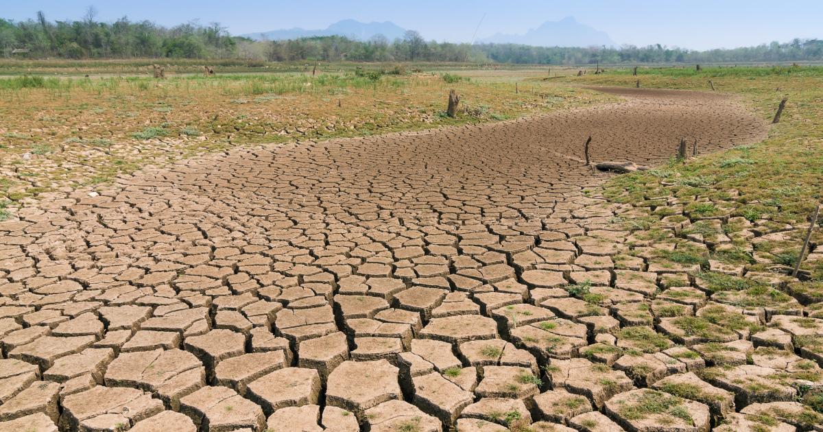 LA DESERTIFICAZIONE NEL BACINO DEL MEDITERRANEO