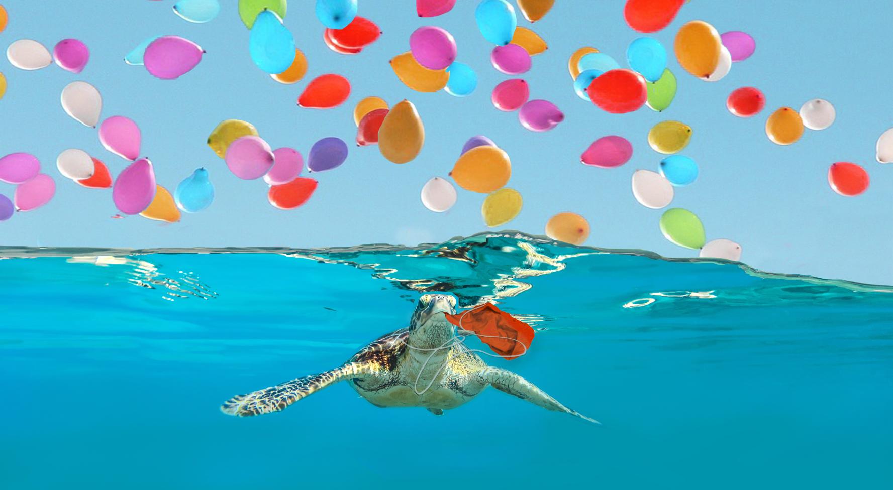 Per il Mare non è una Festa