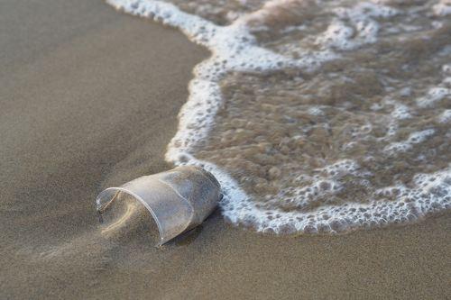 Nella SUP mancano i bicchieri di plastica, presentato in Senato l'emendamento per includerli
