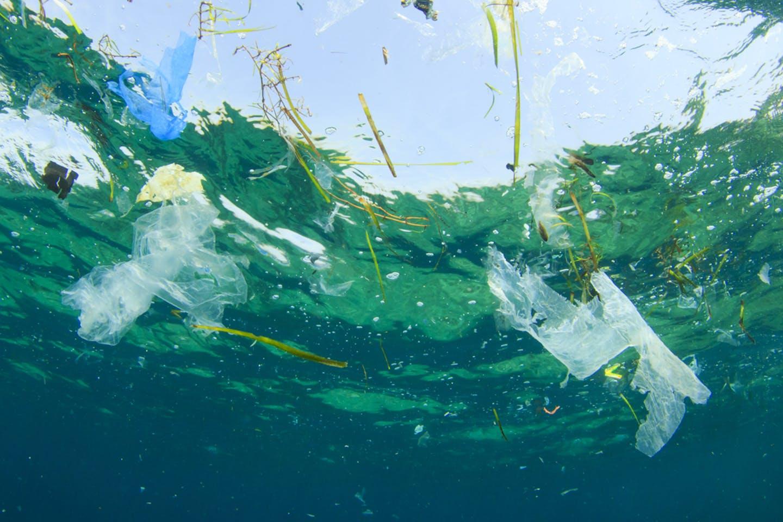 Salviamo i nostri mari dalla plastica