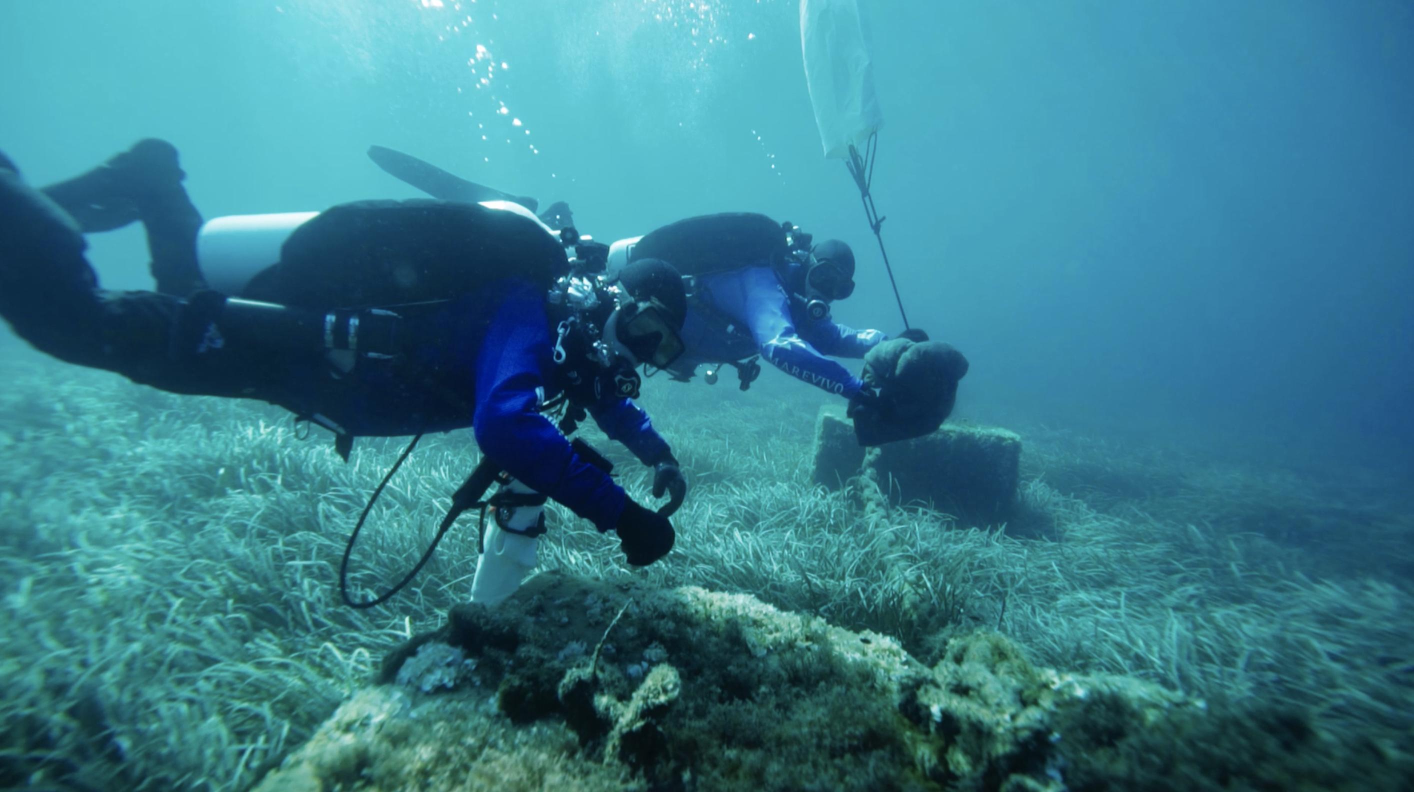 Capraia, Marevivo bonifica oltre 3500 m² di fondali marini. Recuperate 2 tonnellate di rifiuti