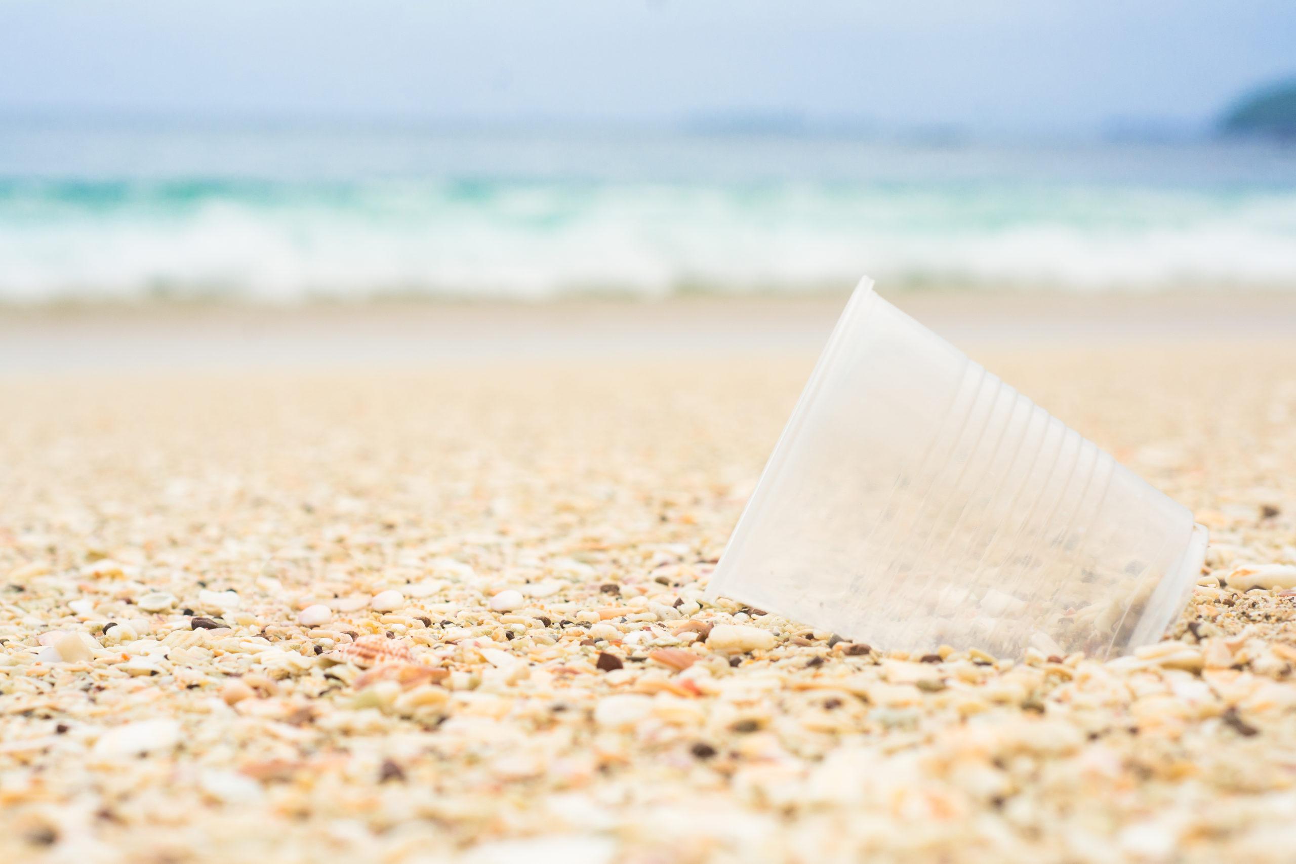 Il Senato approva l'emendamento che include i bicchieri di plastica nella SUP