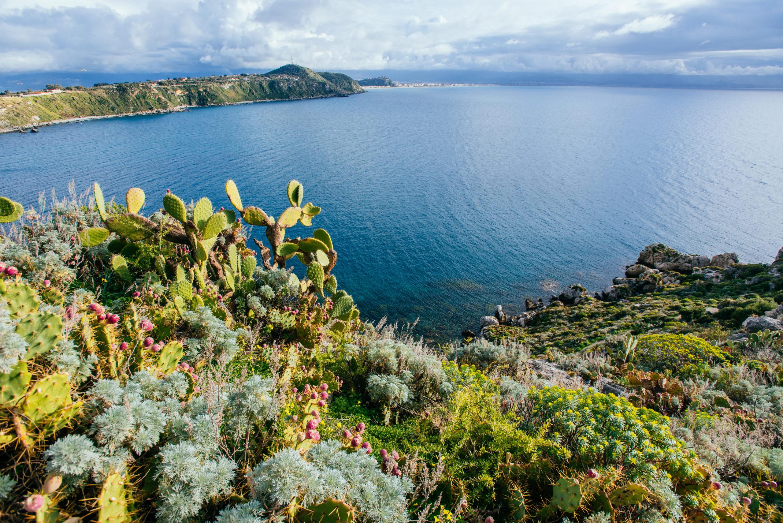 Quanto conosci il Mar Mediterraneo?