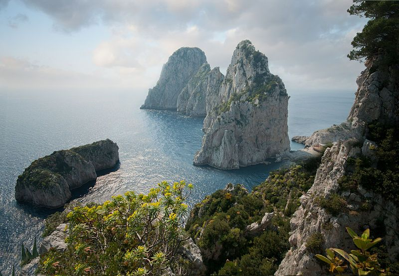 """Marevivo lancia la petizione: """"Tuteliamo Capri in attesa che diventi Area Marina Protetta"""""""
