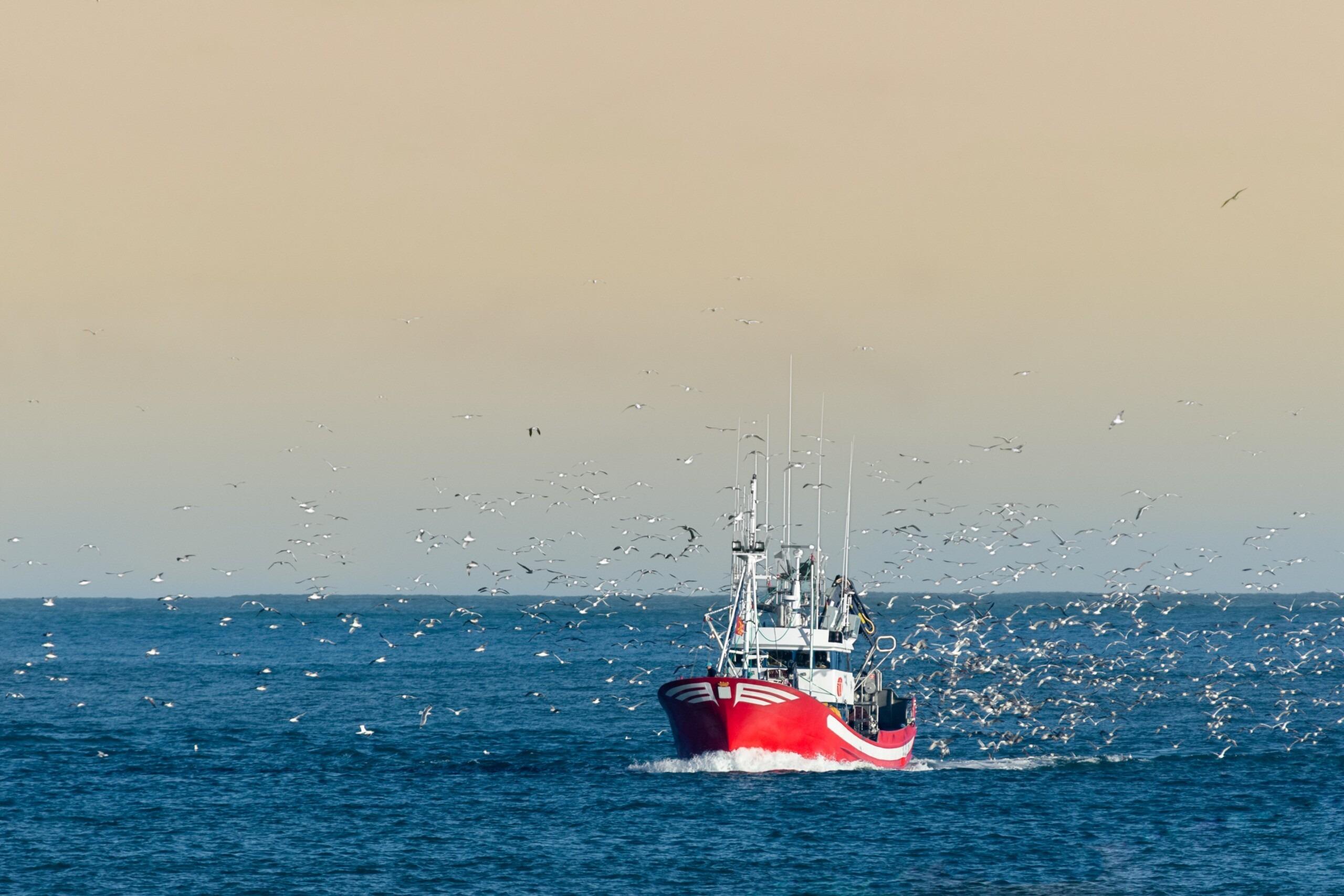 72 ONG chiedono al Parlamento Europeo di porre fine alla segretezza con cui vengono applicate le regole sulla pesca comune