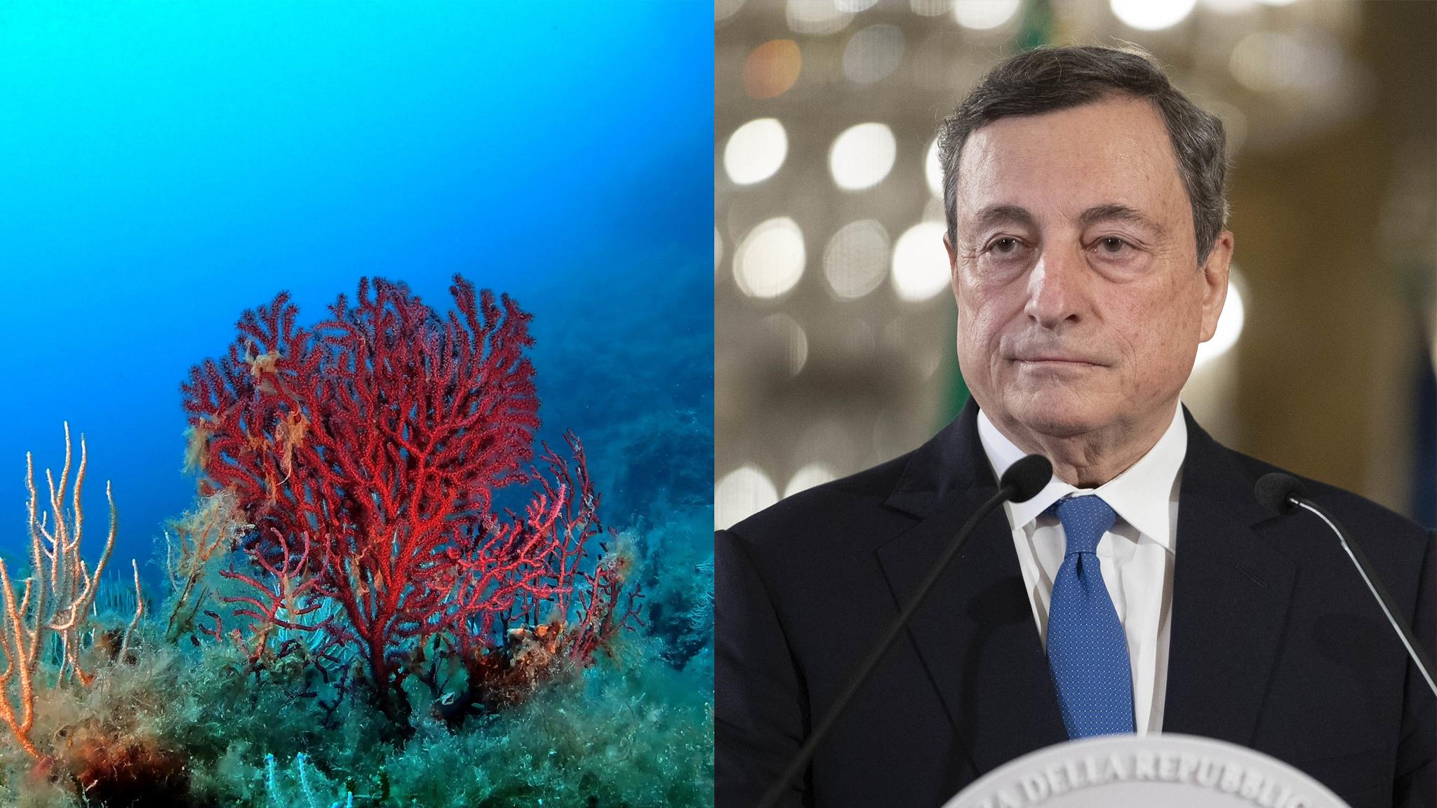 Il mare chiede un incontro con il Presidente Draghi