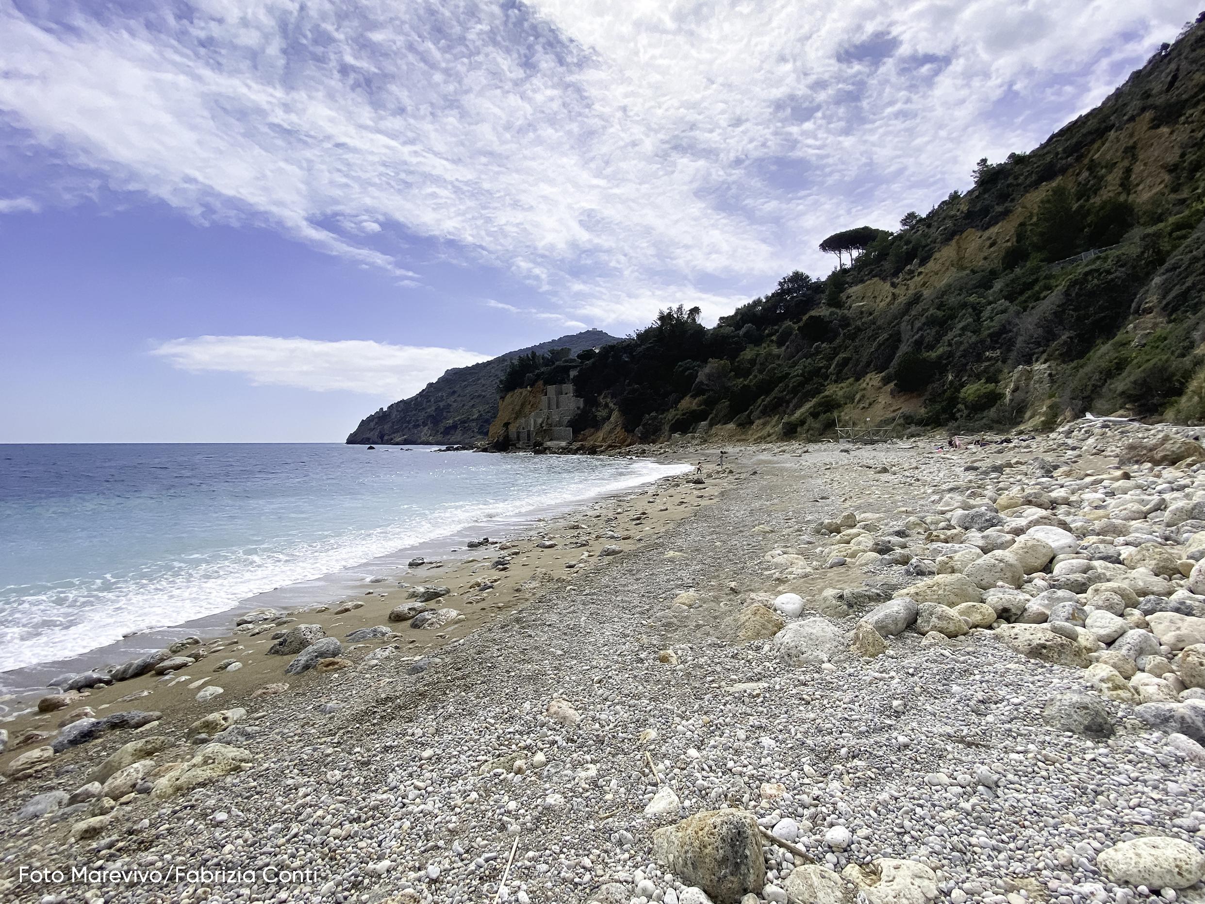 Marevivo e il Gruppo Pellicano Hotels insieme  per la tutela della spiaggia dell'Acqua Dolce