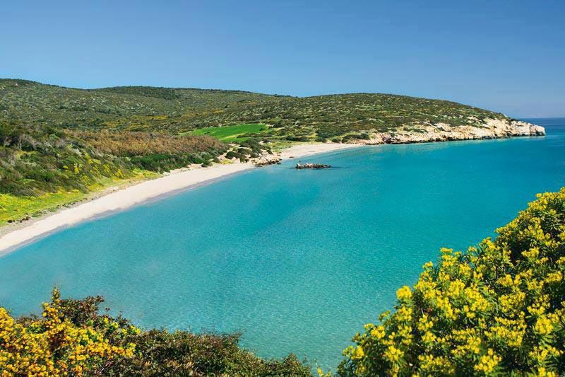 Adotta una spiaggia – Sardegna