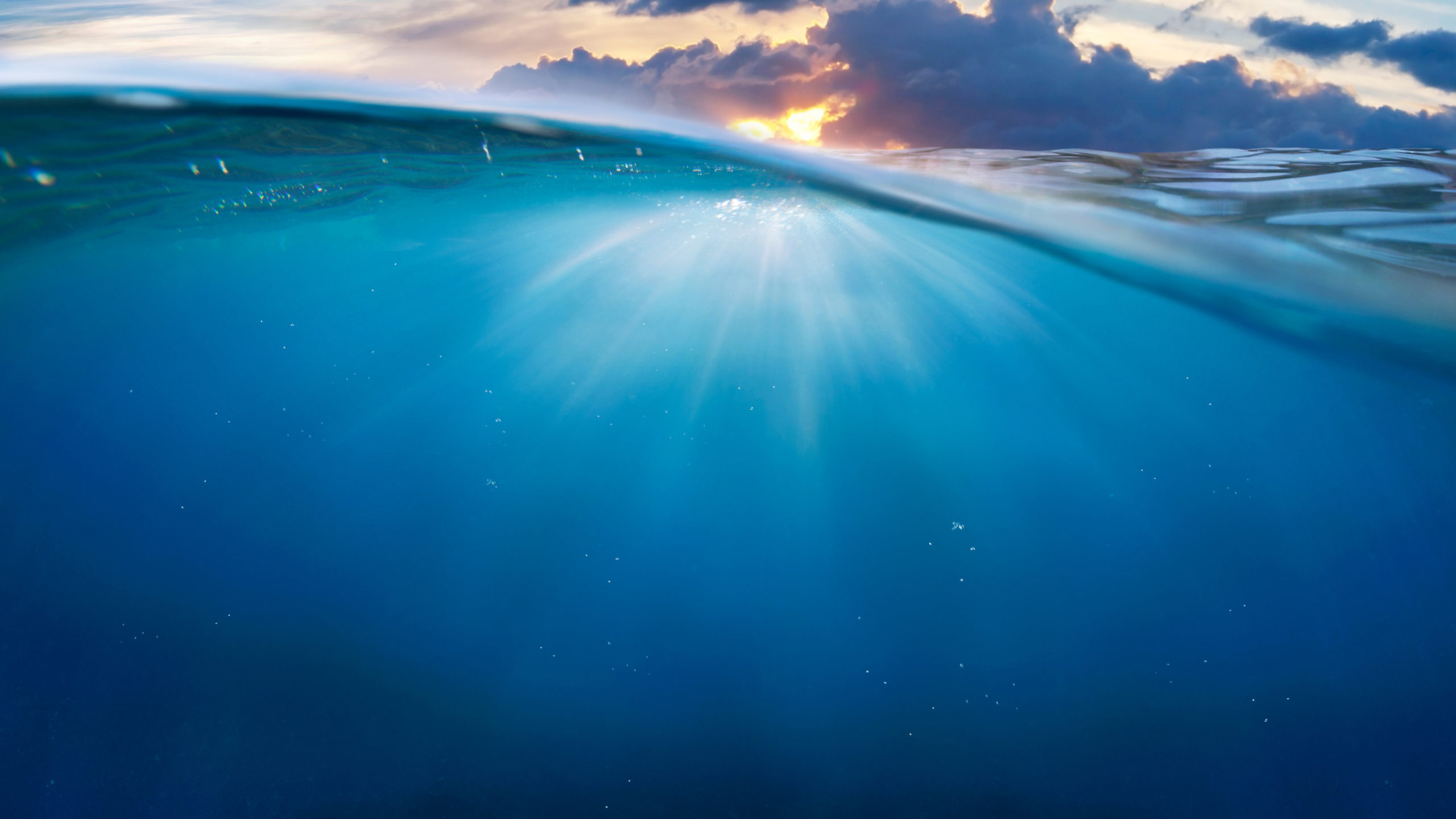 """Conferenza """"Oceani e Salute. Pensavamo di rimanere sani in un mondo malato"""""""